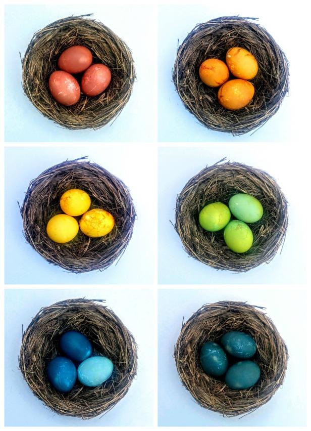 eggcollage